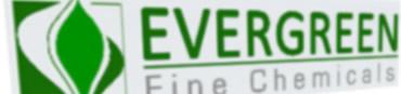 LogoEvergreenFlou